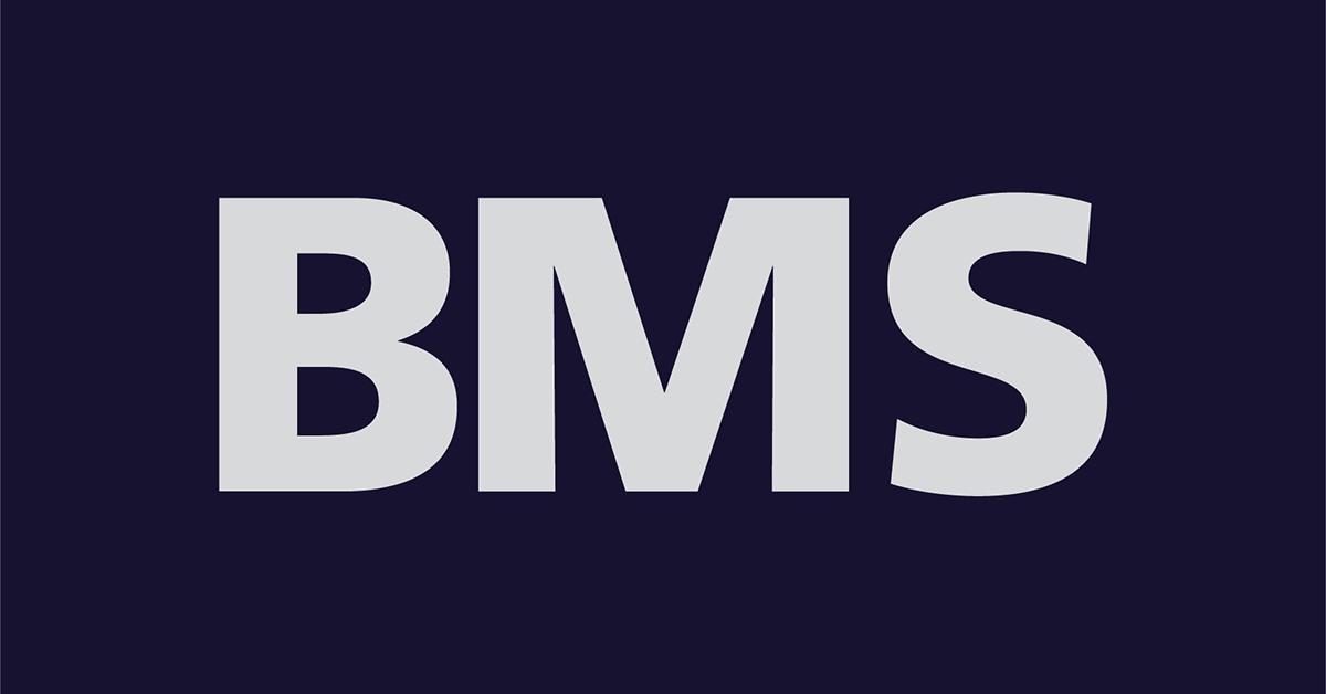 BMS Progetti Srl